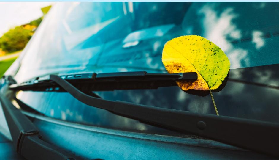 Fiksu autoilija tekee syksyllä seuraavat toimenpiteet tuulilasilleen ja pyyhkijöilleen
